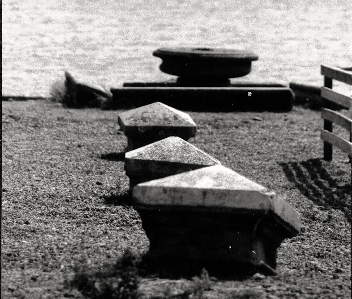 05 Vargar vid hamnen 1994 (SL)