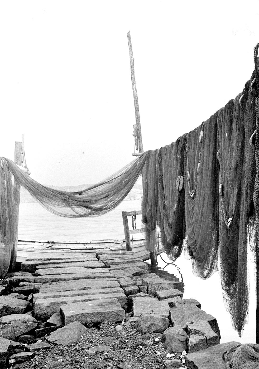 Foto Claes Funck 1963. Ögnevad på tork vid Östens brygga mellan Bäckebro och Ångbåtsbrygga. Ögna är agnsill.