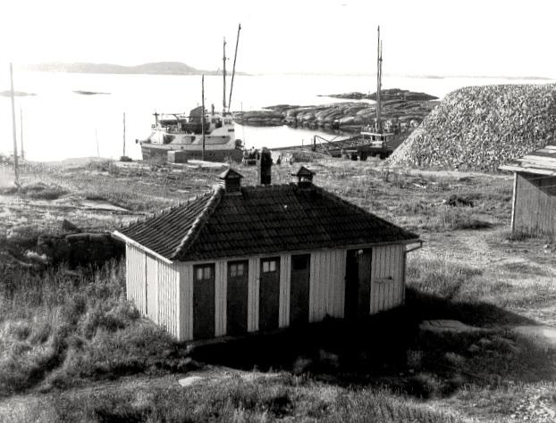 22 Uthus till Gula Huset omkr 1952 med knott på kajen (GH)