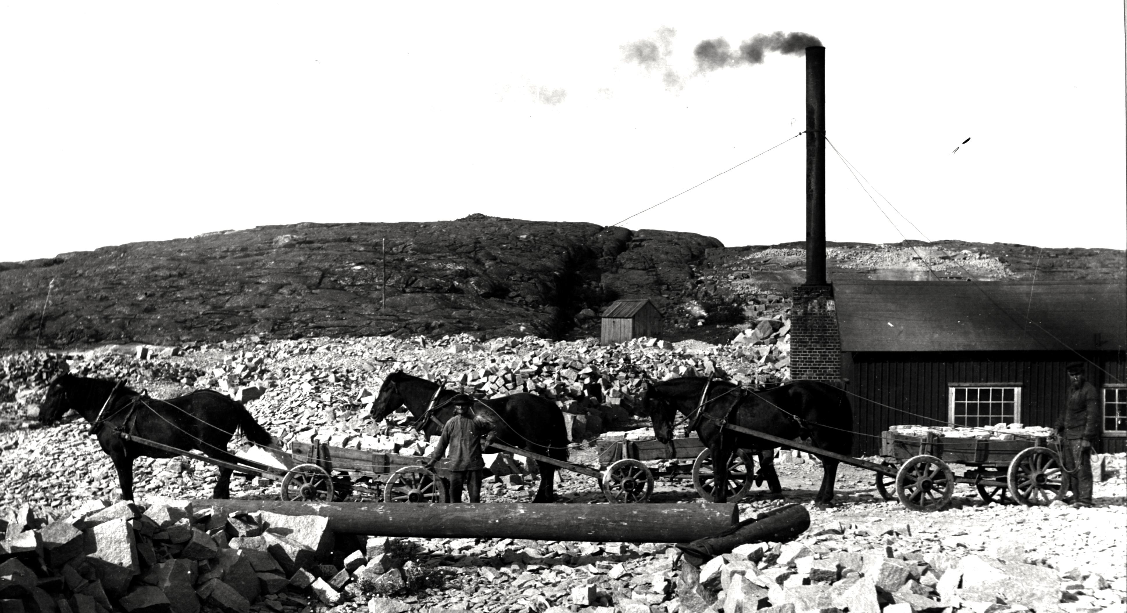 H‰sttransport vid Smedjan - 1910-talet.