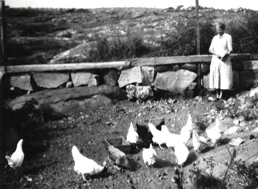 Hilma Fagg i Skogen med hönsen.  Hönshuset var beläget där man i dag parkerar bilarna.